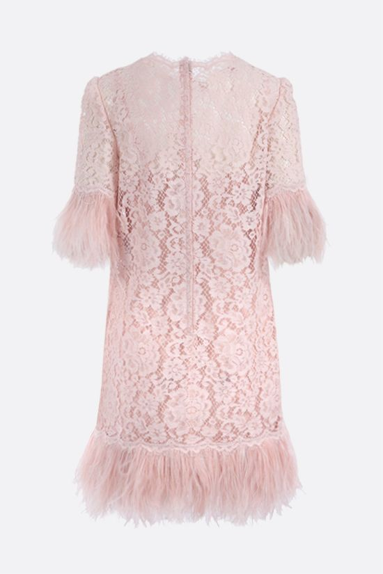 DOLCE & GABBANA: feather-embellished Cordonetto lace short dress Color Pink_2