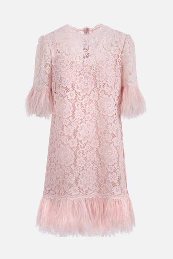DOLCE & GABBANA: feather-embellished Cordonetto lace short dress Color Pink_1
